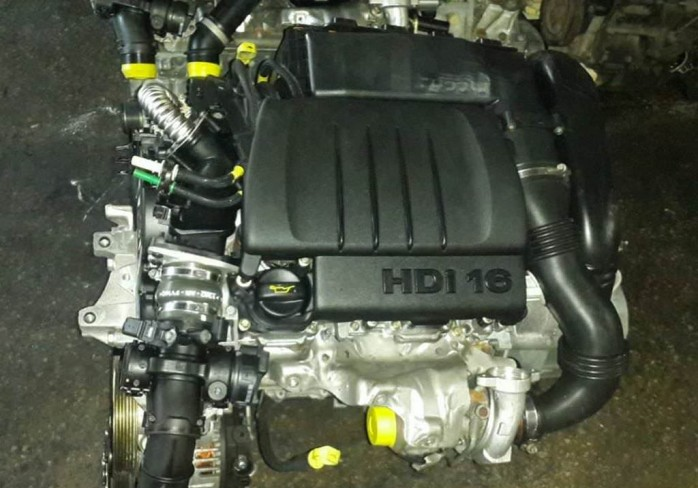 DV6 1.6 HDİ Motor